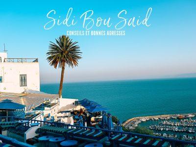Sidi Bou Said : pour des vacances reposantes en Tunisie