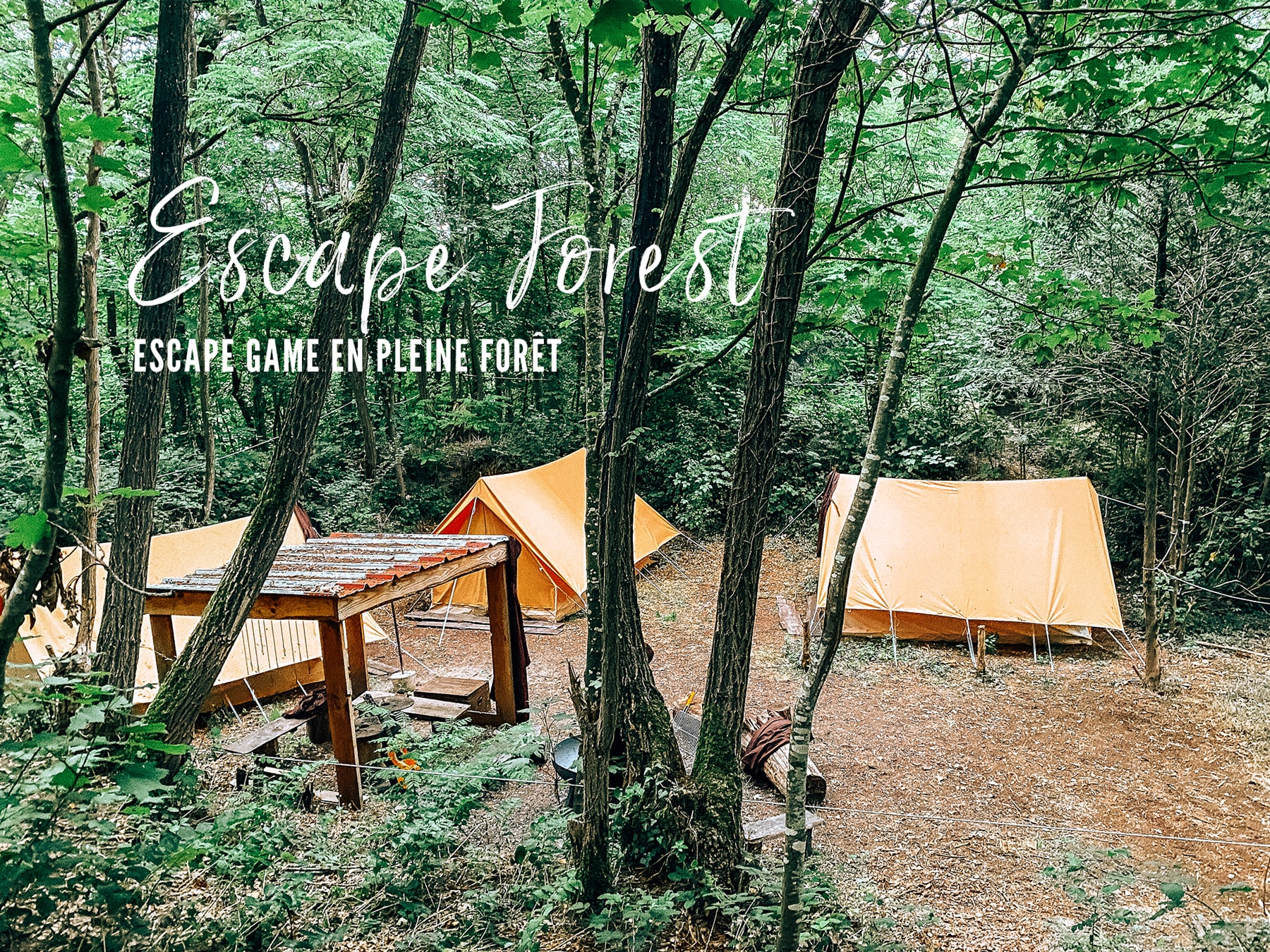 escape game en foret