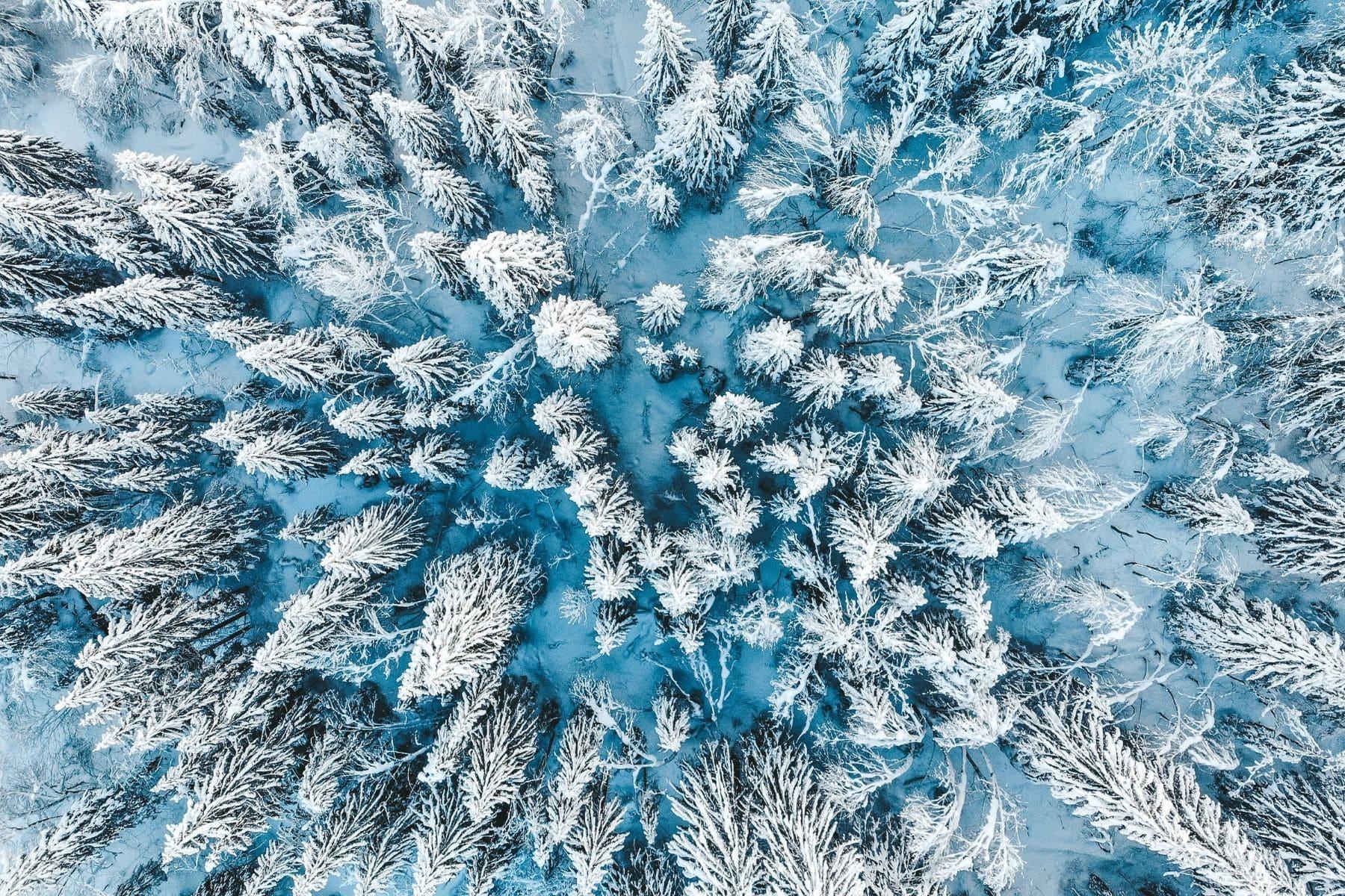 sejour hiver